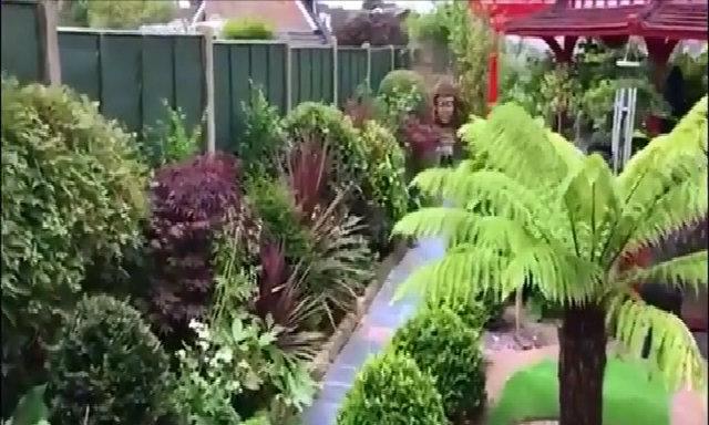 Chủ nhà chi hết tiền kiếm được 5 năm để làm vườn kiểu Nhật