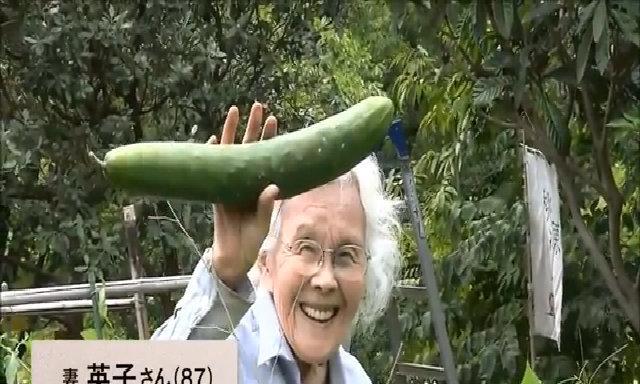 KTS người Nhật bỏ nghề về làm nhà đơn sơ có đủ loại cây trái