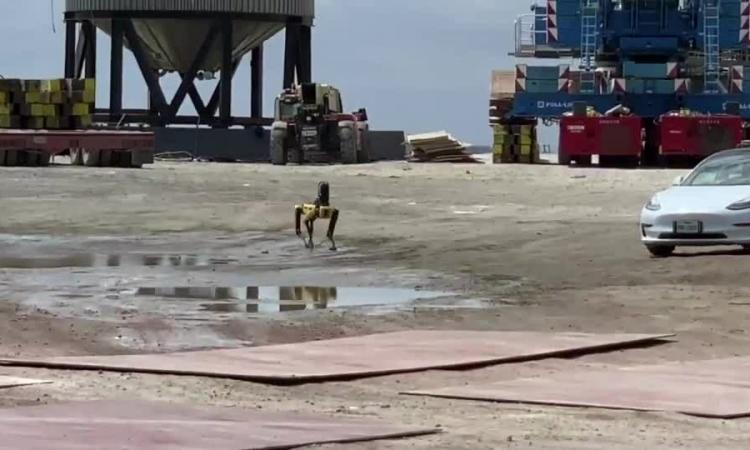SpaceX dùng chó robot để kiểm tra tên lửa