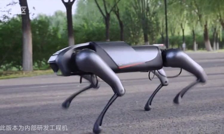 Xiaomi ra chó robot CyberDog