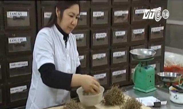 Tác dụng chữa bệnh của trà cây chó đẻ