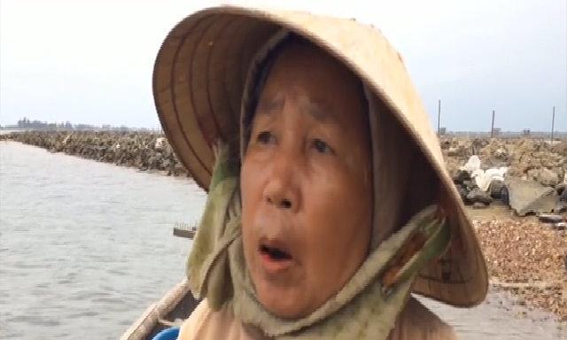 Bắt hơn 10kg trìa mỗi ngày dưới lớp bùn ở phá Tam Giang