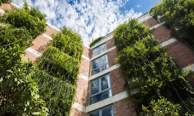 Khu nhà Hội An lọt top 10 công trình xanh kỳ lạ trên thế giới
