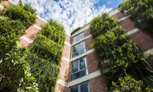 Khách sạn phủ kín cây xanh ở ban công