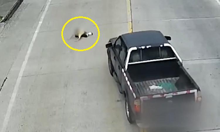 Đứa trẻ chạy sang đường bị ôtô đâm trúng
