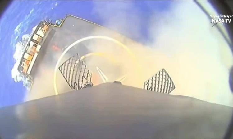 SpaceX phóng gấu nước và mực con lên ISS